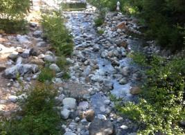 Stewert Springs